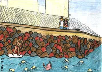 in Balaklawa (Krim/Ukraine) sind viele Quallen im Schwarzen Meer